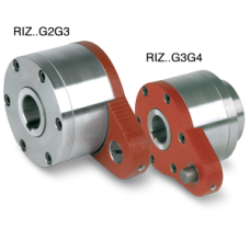 Backstop freewheel clutch RIZG2G3 30 made in china
